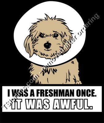 I Was A Freshman Once. IT WAS AWFUL.